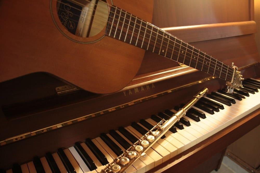 learn piano guitar