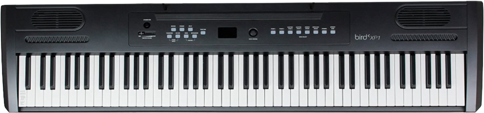 bird xp1 kb piano